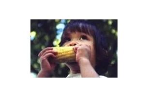 Corn on the Cob Days